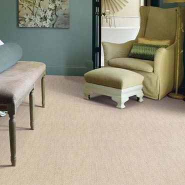 Caress Carpet by Shaw | Milford, PA